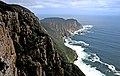 Cape Raoul 2.jpg