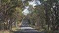 Capertee NSW 2846, Australia - panoramio (1).jpg