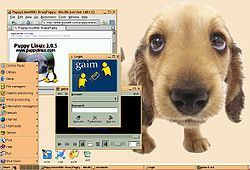 Puppy Linux 1.0.5 running JWM with custom defaults
