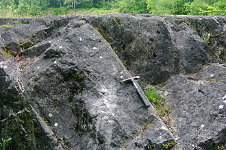 Carboniferous Limestone - Carboniferous Limestone exposed at Tedbury Camp, Somerset, England.
