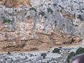 Castellar de Meca en el Wikitakes Ayora año dos mil dieciseis 13.jpg