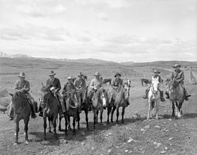 Groupe de cow-boy canadiens escortant du bétail, 1947