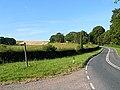 Cawkwell Hill - geograph.org.uk - 520295.jpg