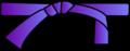 Ceinture violette.png