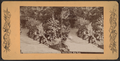 Central Park, New York, from Robert N. Dennis collection of stereoscopic views 3.png