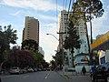 Chegando em casa - panoramio - Augusto Ferreira.jpg