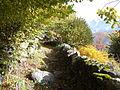 Chemin-LesGranges-TêteDesCrêtes.jpg