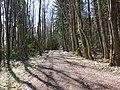Chemin d'Angely @ Vaulx (51055511003).jpg