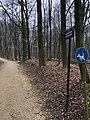 Chemin des Anémones.jpg