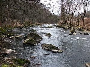Chemnitz (river) - Image: Chemnitzfluss in Schweizerthal (1)