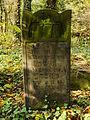 Chenstochov ------- Jewish Cemetery of Czestochowa ------- 65.JPG