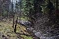 Cherevakha Manevytskyi Volynska-Urochyshche Dzherela nature reserve-view near Cherevakha river-2.jpg