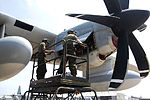 Cherry Point Marines work through the summer heat 120720-M-EG384-032.jpg