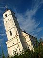 Church of the Transfiguration at the site of ancient settlement in Zaslaŭje - panoramio - Andrej Kuźniečyk (2).jpg