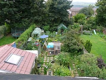 Suburban permaculture garden in Sheffield, UK with different layers of vegetation Claire Gregorys Permaculture garden.jpg