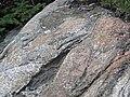 Clast-rich impact pseudotachylite (Sudbury Breccia, Paleoproterozoic, 1.85 Ga; Windy Lake Northwest roadcut, Sudbury Impact Structure, Ontario, Canada) 71 (33881355248).jpg