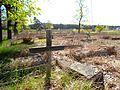 Cmentarz ewangelicki na Podgórzu w Toruniu (ul. Poznańska 313)4.jpg
