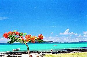 Mauritius Island - A beach on the Mauritius Island.