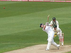 Paul Collingwood - Collingwood plays down the ground during the first Test of the 2009 Ashes at the SWALEC Stadium.