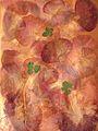 Composition avec 3 trèfles à quatre feuilles.JPG