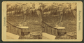 Comstock tramway, St. John's, from Robert N. Dennis collection of stereoscopic views.png