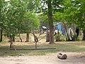 Comunidad Aborigen Porcelana - Baule - panoramio (1).jpg