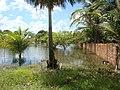 Construção Irregular em Área de Proteção Ambiental Permanente - panoramio.jpg