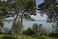 Contrada Castello, 06061 Castiglione del Lago PG, Italy - panoramio (57).jpg