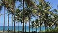 Corumbau Bahia 6.jpg