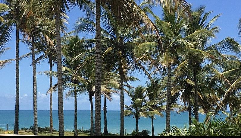 praias mais belas da Bahia