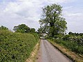 Country road from Langton to Headlam - geograph.org.uk - 1339326.jpg