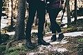 Couple in a wintry forest (Unsplash).jpg