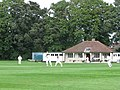 Cricket on the Hills Road Sixth-Form College Ground - geograph.org.uk - 1393351.jpg