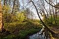 Dülmen, Kirchspiel, Naturschutzgebiet -Franzosenbach- -- 2017 -- 7032.jpg