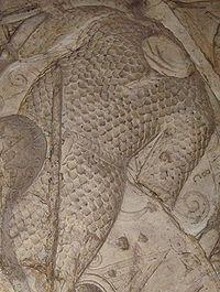 Dacian Scale Armour.JPG