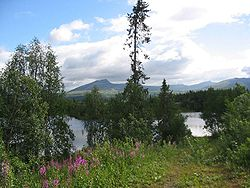 Forest, lakes and mountains in Røyrvik