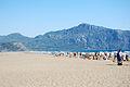 Dalyan beach (1091861706).jpg