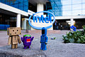 Danbo and Domo meet a new friend in Silicon Valley (10722049866).jpg