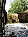 Davidson Mill Pond Park, South Brunswick, New Jersey USA July 15th, 2013 - panoramio (24).jpg