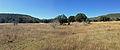 Davis Mountains Preserve 4.JPG