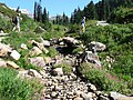Dead Horse Creek trail (de2b98f9718242e39e5307b7e7673c65).JPG