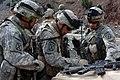 Defense.gov News Photo 070401-A-9326H-002.jpg