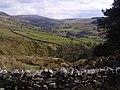 Dentdale - geograph.org.uk - 755190.jpg