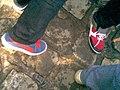 Des pieds 1 (7233654442).jpg