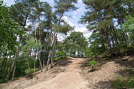 Detmold - 2014-06-15 - LIP-023 - Sandkasten (04).jpg