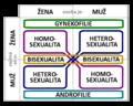 Diagram sexuální orientace.png