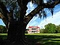 Drayton Hall plantation house distant.JPG