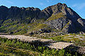Drying Stockfish Lofoten 2009 3.JPG