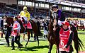 Dunaden and Fiorente, 2013 Melbourne Cup.jpg