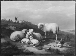 Dune Landscape with Resting Sheep
